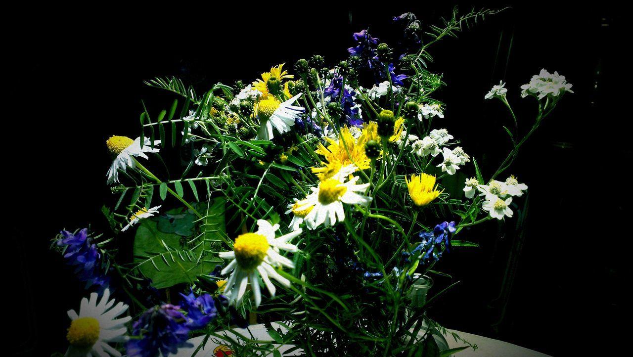 букет Flowers Bouquet