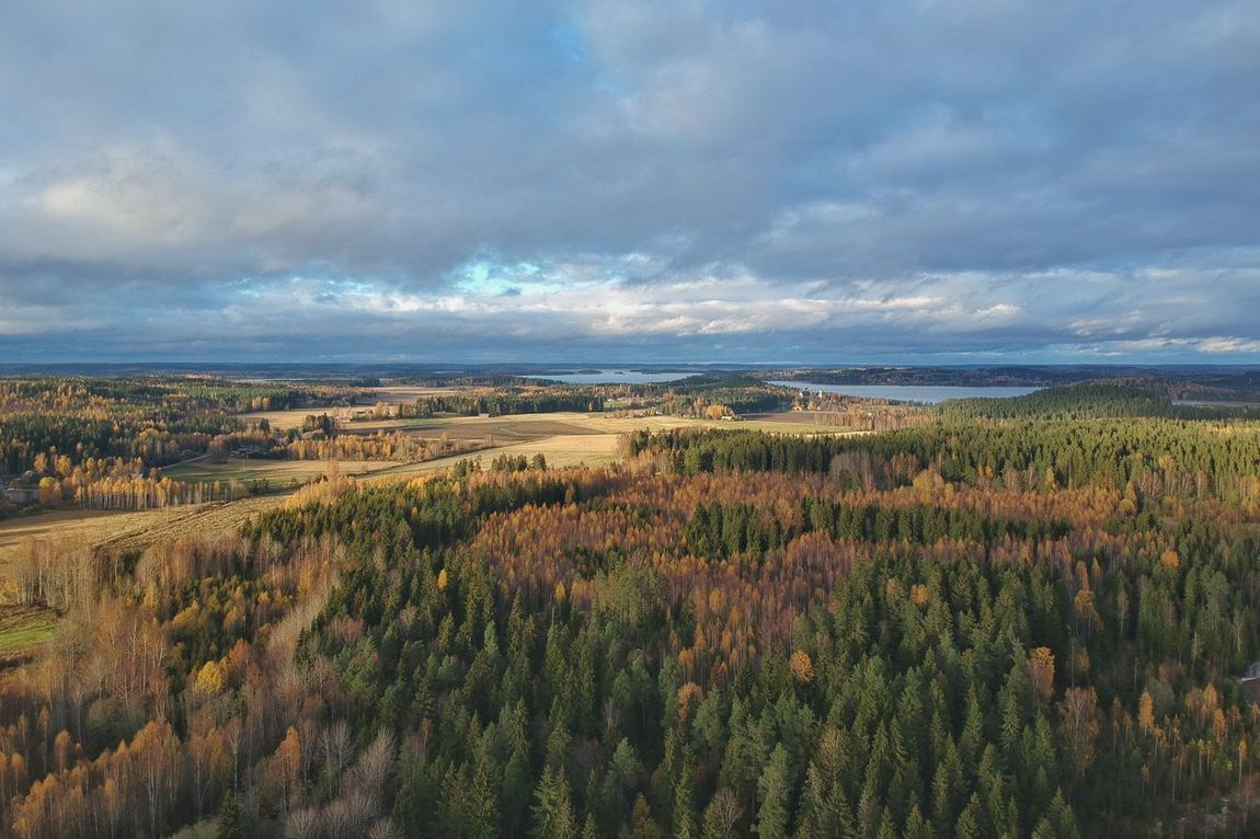 Perspectives On Nature Landscape Nature Tranquility Sky Beauty In Nature Tranquil Scene Scenics Cloud - Sky Field No People Growth Outdoors Tree Day Dji