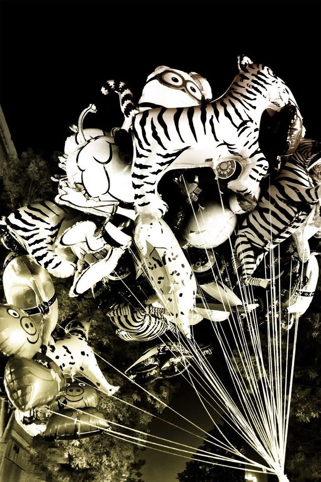 Balloons everywhere Creativity Balloons EyeEm Best Shots Black & White EyeEm Gallery Magazine Gold Golden Design Art Commercial Kids Children In The Air Sky Fantasy Everywhere Happy Dreaming Decoration EyeEm Best Edits EyeEm Best Shots - Black + White Dreams Different Childhood