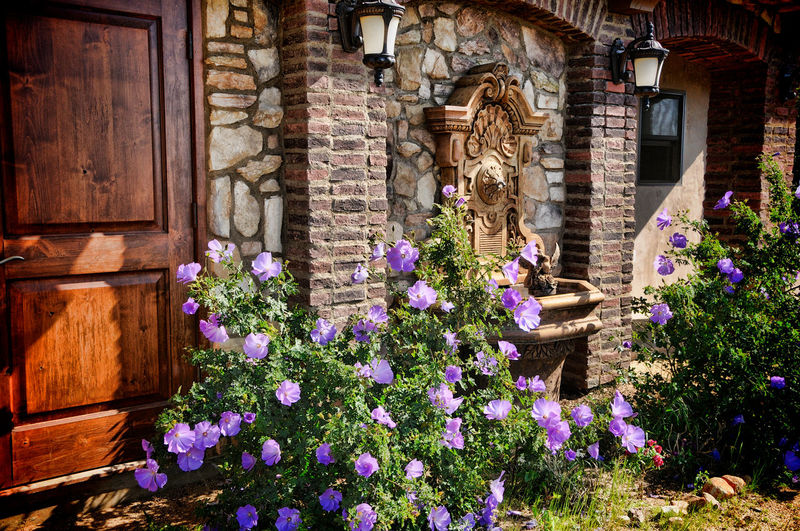 Tuscany Cottage & Lilacs Fountain Tuscany Home Architecture Building Exterior Built Structure Cottage Cottage Garden  Day Flower Growth Nature No People Outdoors Plant
