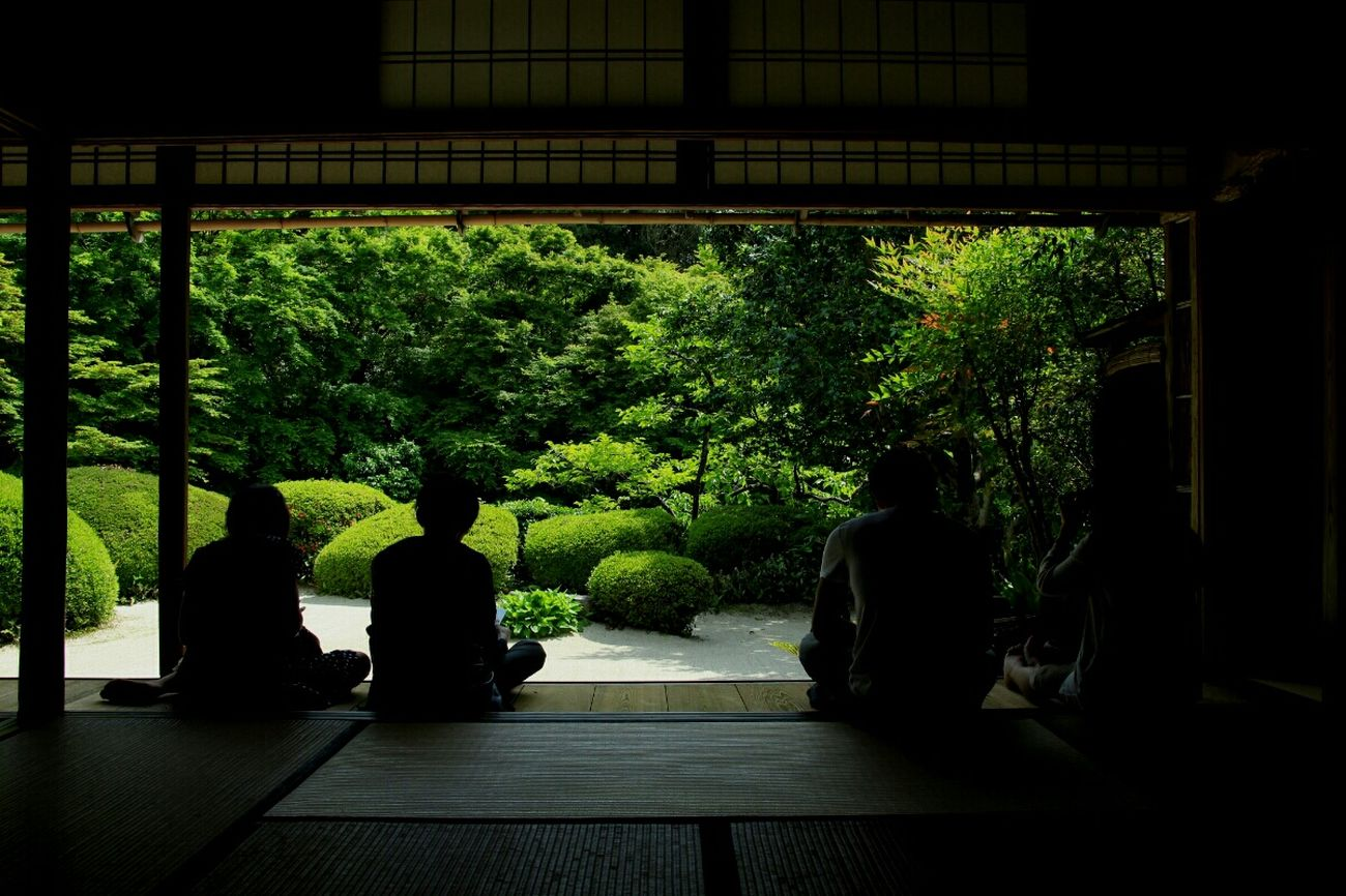 友達に会いに京都へ Japanese Temple Japanese Culture Travel Photography Light And Shadow Getting Inspired EyeEm Nature Lover
