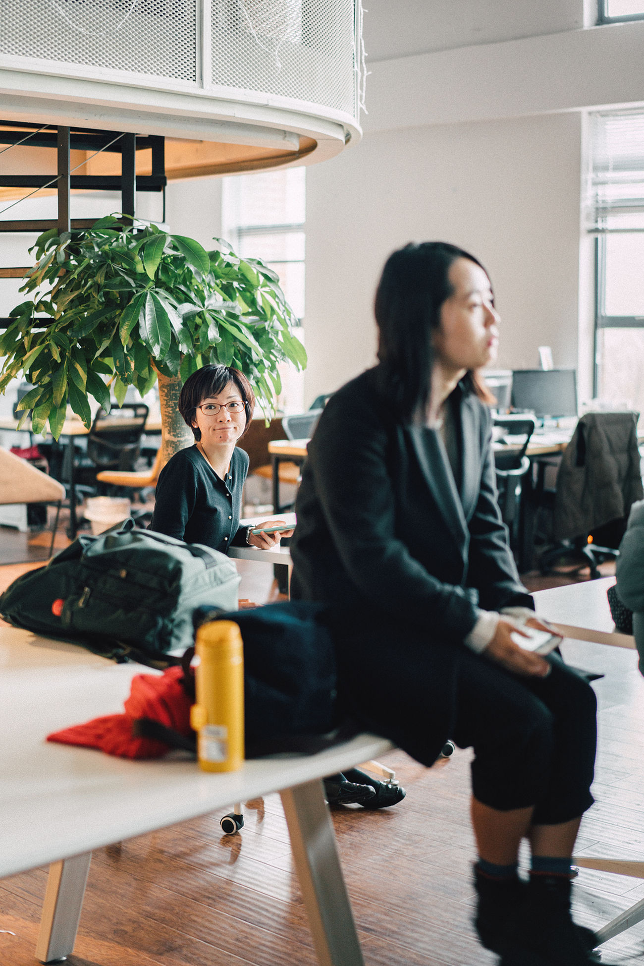 Sitting Candid Business Finance And Industry Adults Only Small Business Full Length Real People Adult People Day Relaxation Happiness Chair Indoors  Friendship Only Women Community Young Adult Smiling