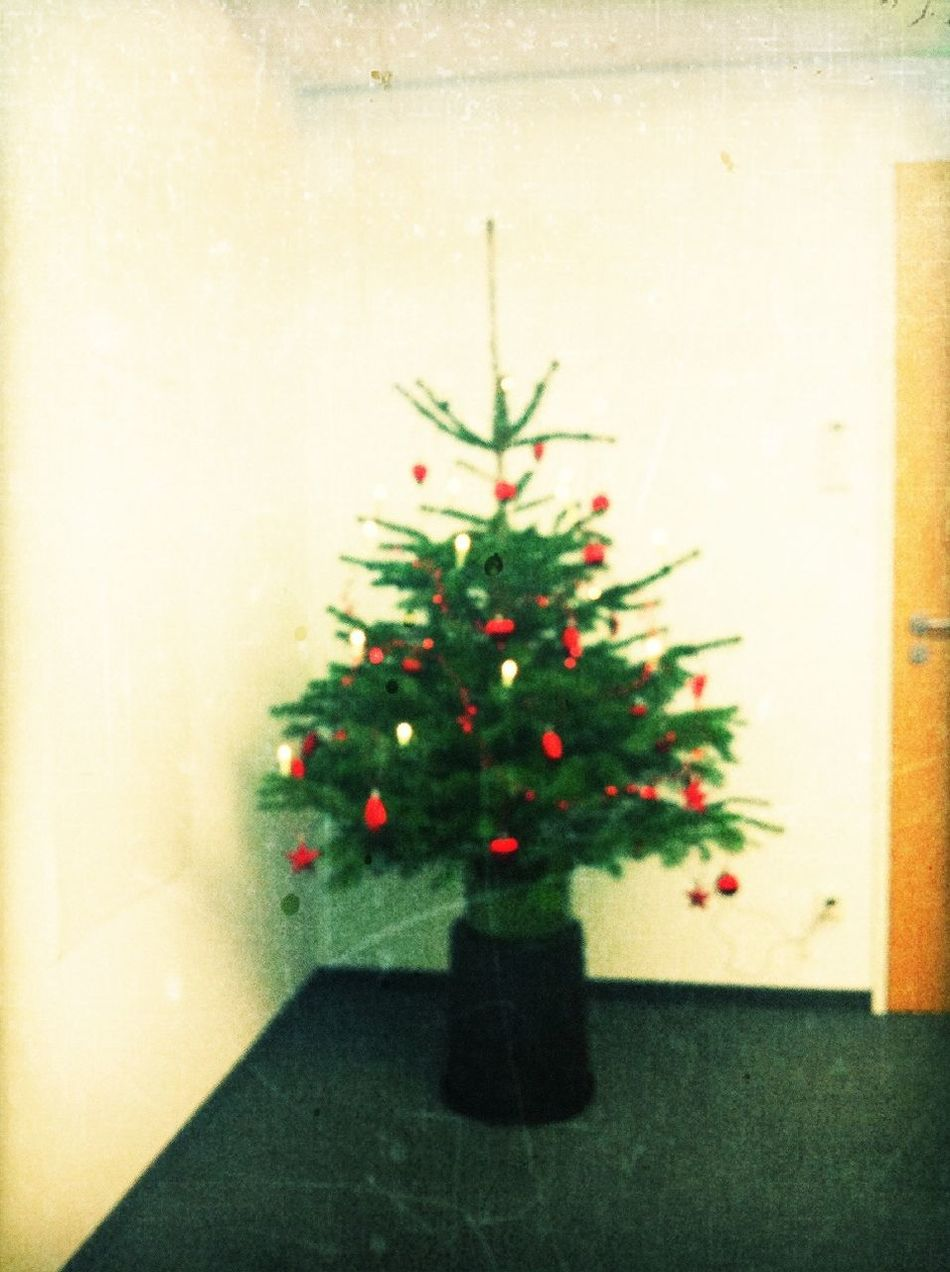 office christmas tree at Axel Springer Media Impact Office Christmas Tree