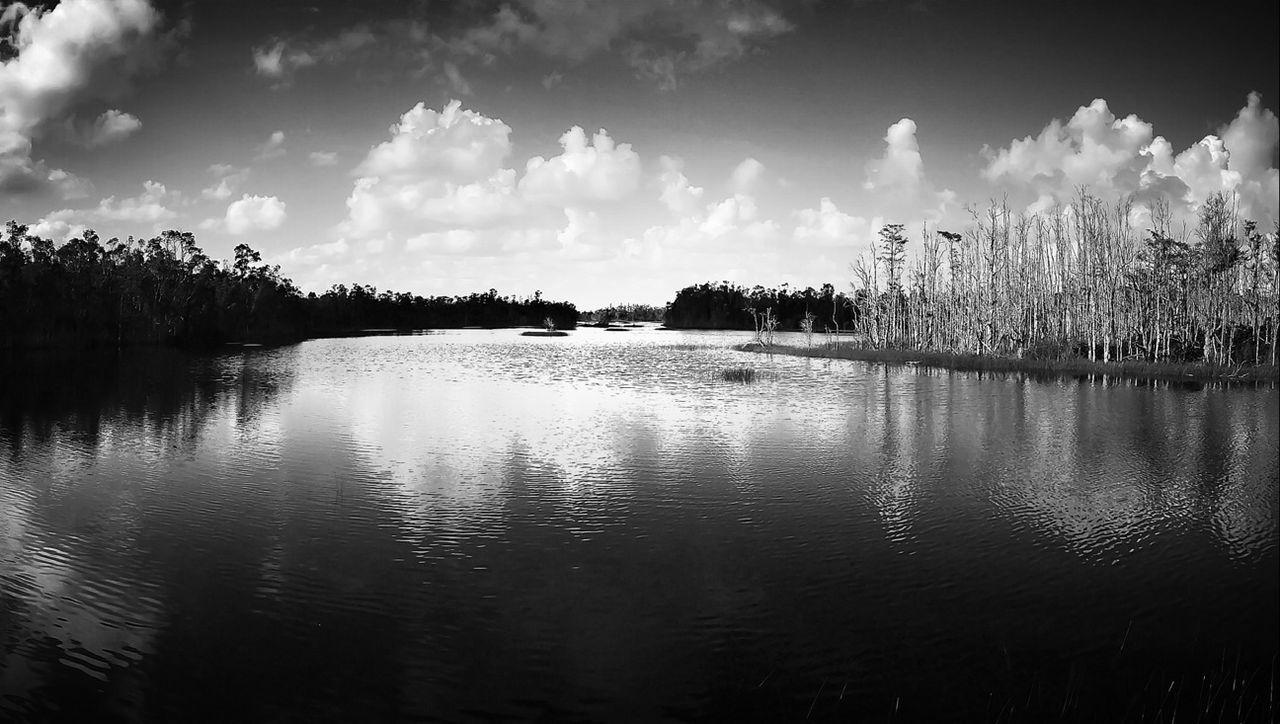 Nature Blackandwhite Black And White Landscape