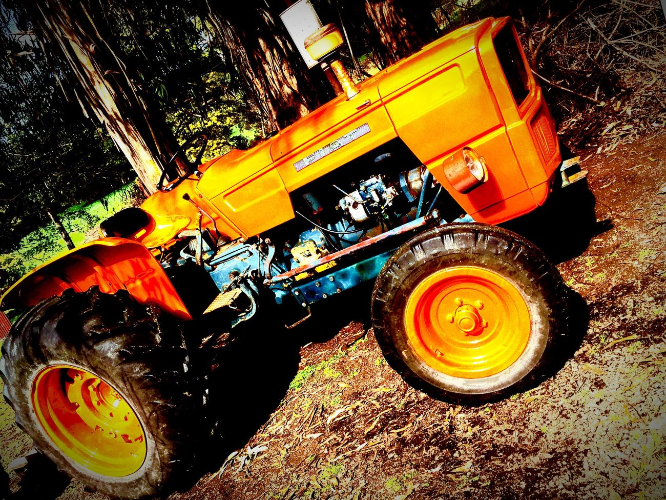 My Dads tractor