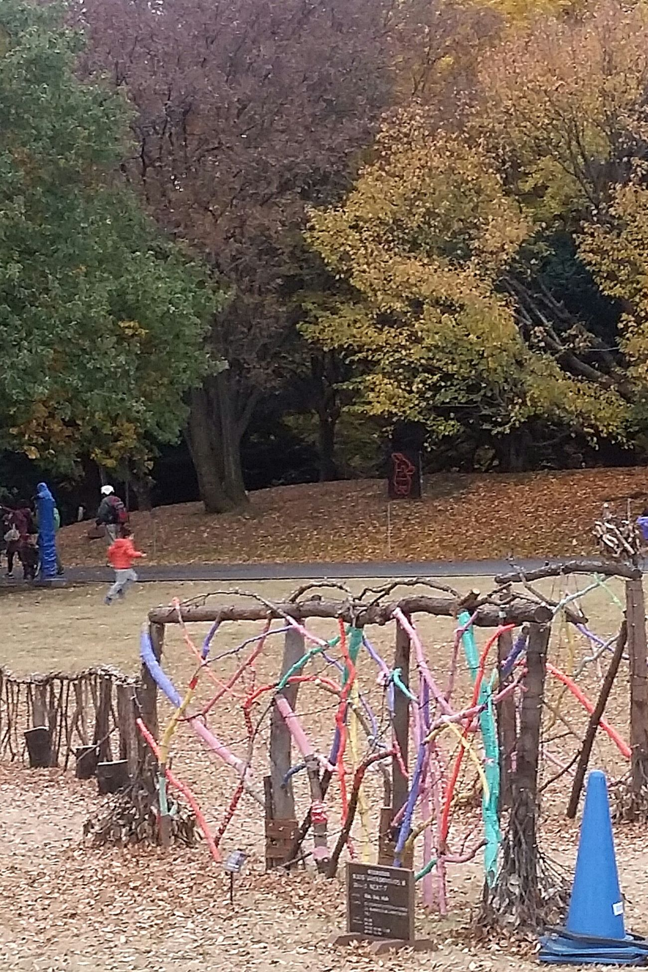 Play Area Showa Kinen Park Japan Japannov2016 Japanautumn2016 Autumn Trees The Colours Of Autumn The Colours Of Nature