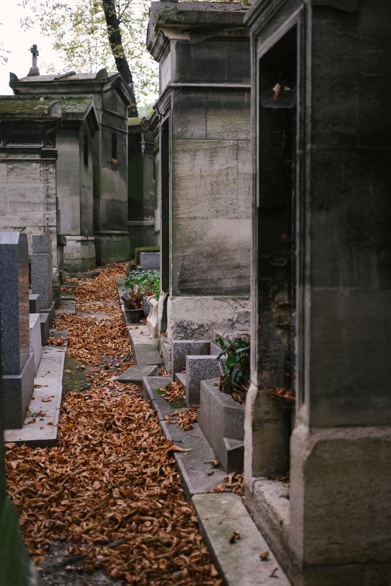 Autumn Autumn Leaves Cemetery City Day Fallen Leaves France Mausoleum No People Outdoors Paris Path Père Lachaise