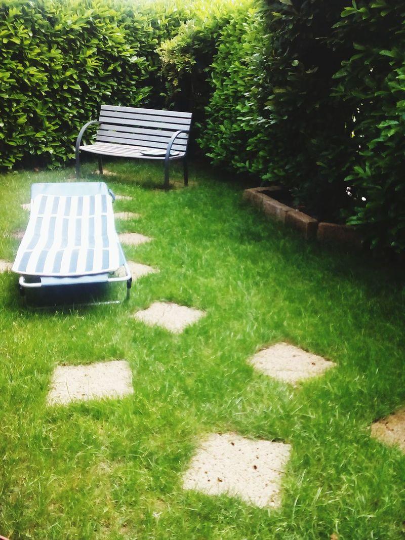Mein kleiner Garden, mein großes Paradies 😍 Taking Photos Hello World Relaxing Deutsch Lernen Photography Garten Grün Nature_collection Nature What I See Right Now Natur Verde Vert Green зеленый