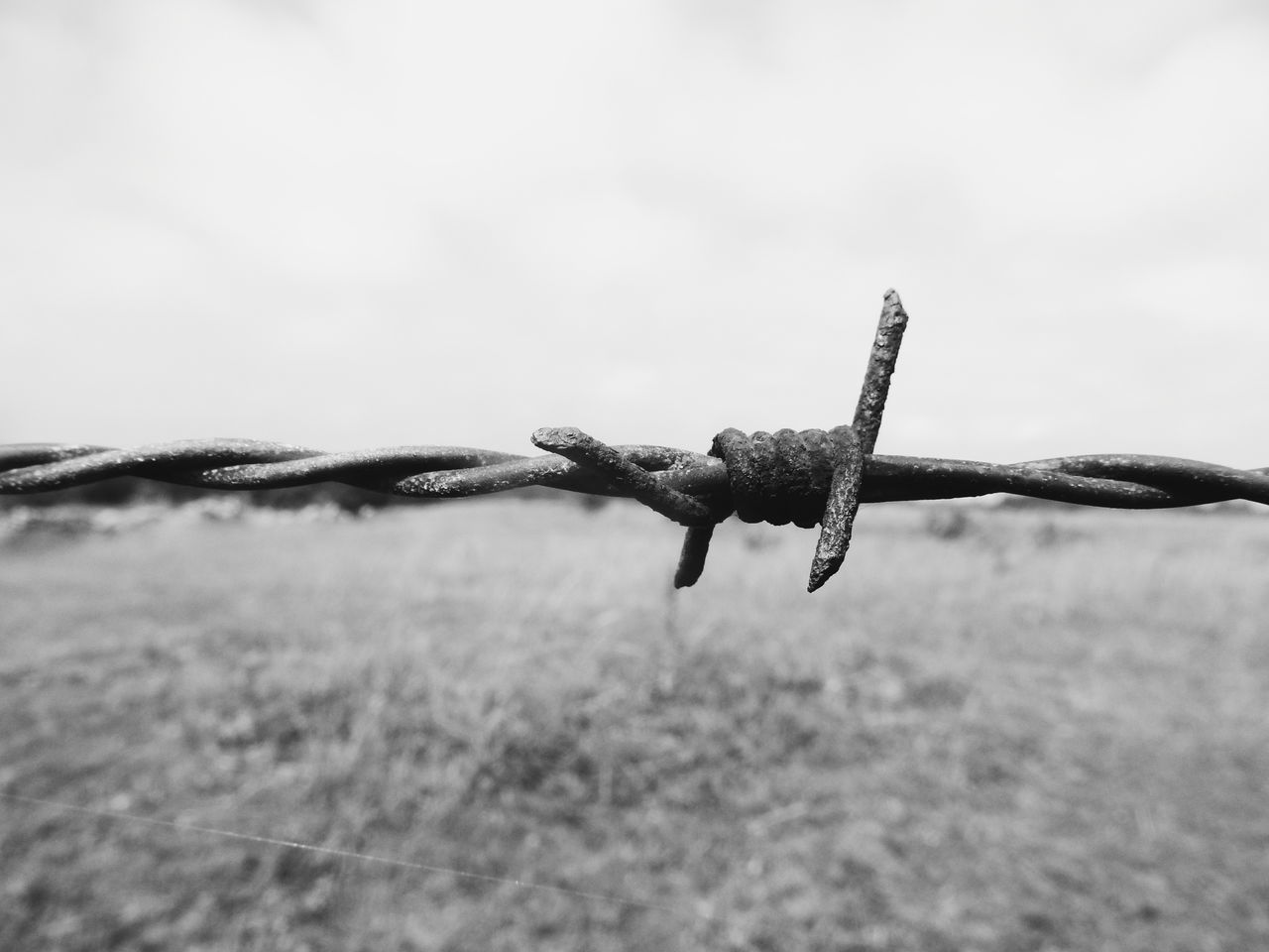 barbed wire against landscape Barbed Wire Barbedwire Barbed Wire Close Up Barbed Barbed World Fench Blackandwhite Black And White Black & White Blackandwhite Photography Monochrome Backgrounds Background Showcase June Fine Art Photography