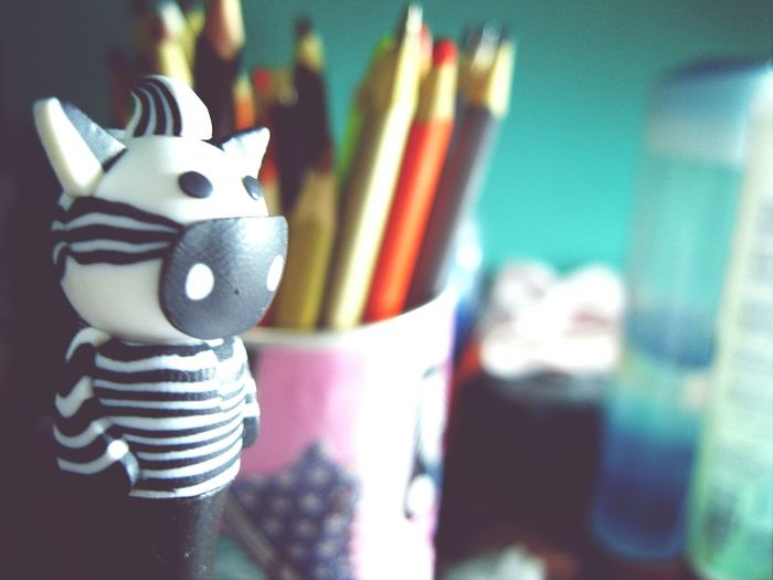 After To Be Studing Non Stop For 5 Days! With The Zebra Feeling Exhausted