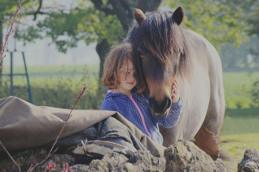 Horse Photography  Horse <3 Horse Love Children Children And Animals Bath Villiage Life Villiage
