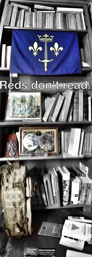 Reading Austrasie Reds Don't Read