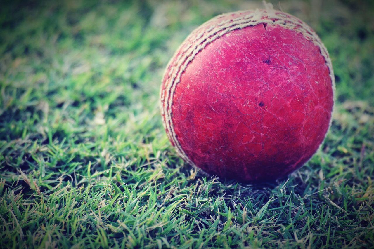 Crickets Ball Sport Sports Photography Nikonphotography