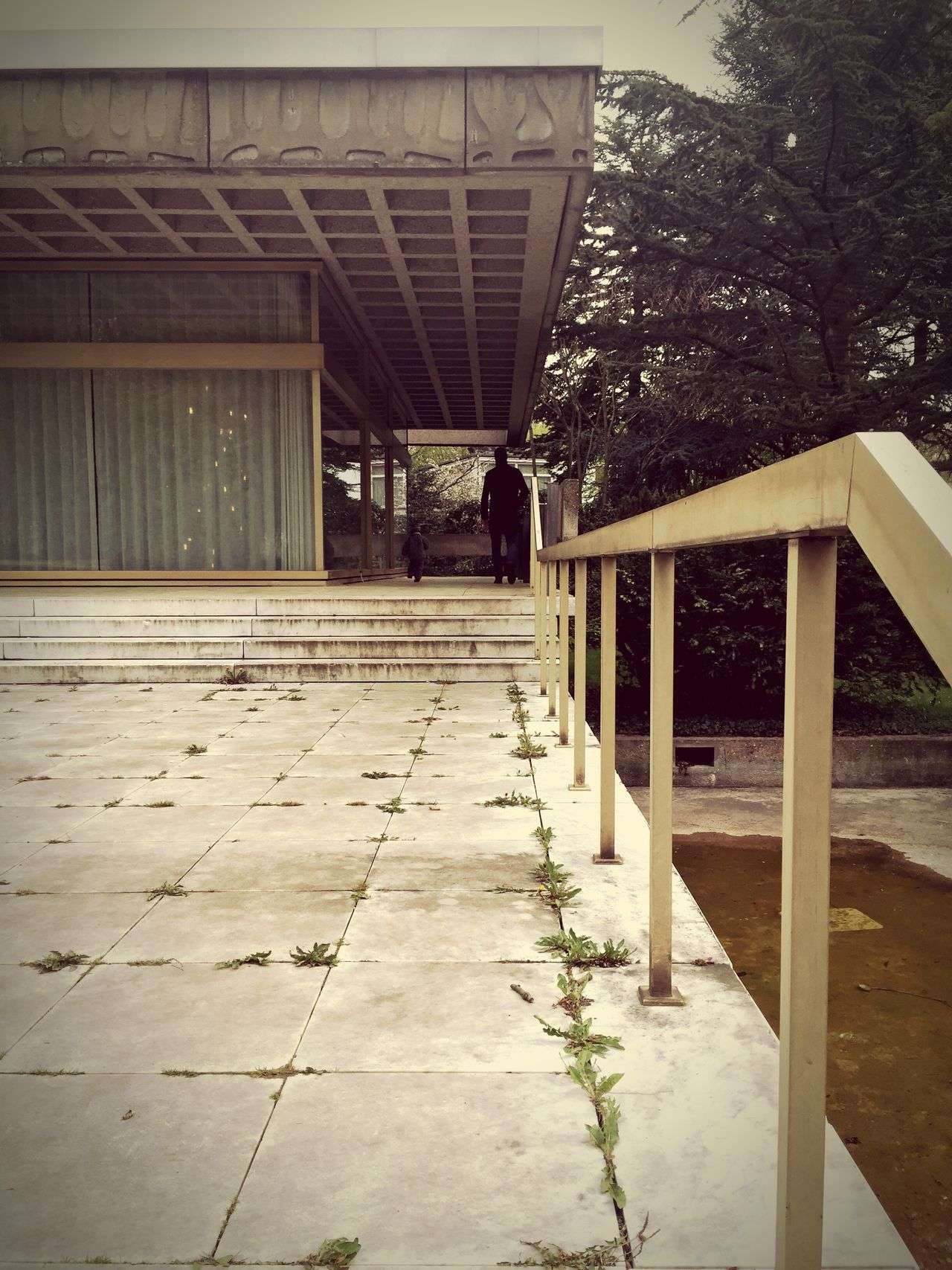 Decay in Bad Godesberg. Bonn Stadthalle Bad Godesberg Verfall Badgodesberg Decay Urban Treppe Stairs Daytime