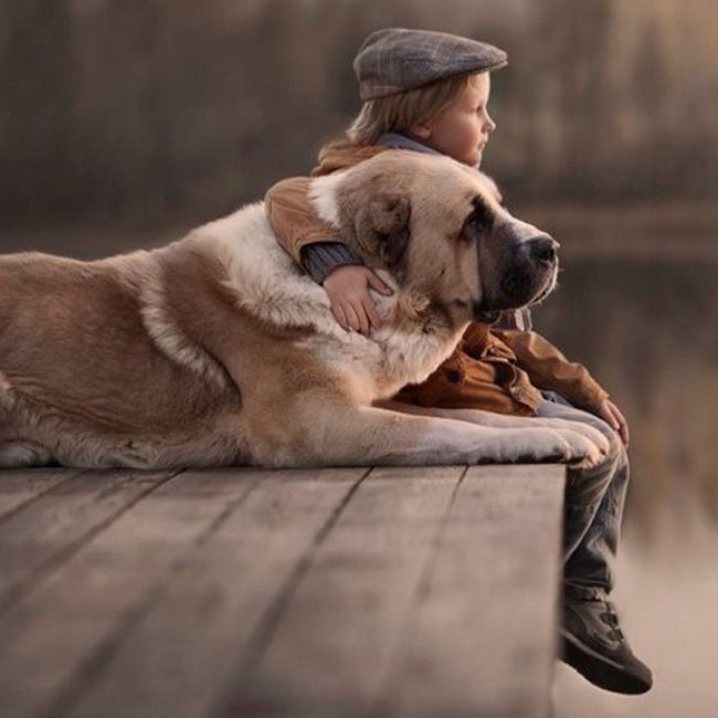 Best friend forever.. Pets By ITag Animal By ITag Forever Friends - ITag