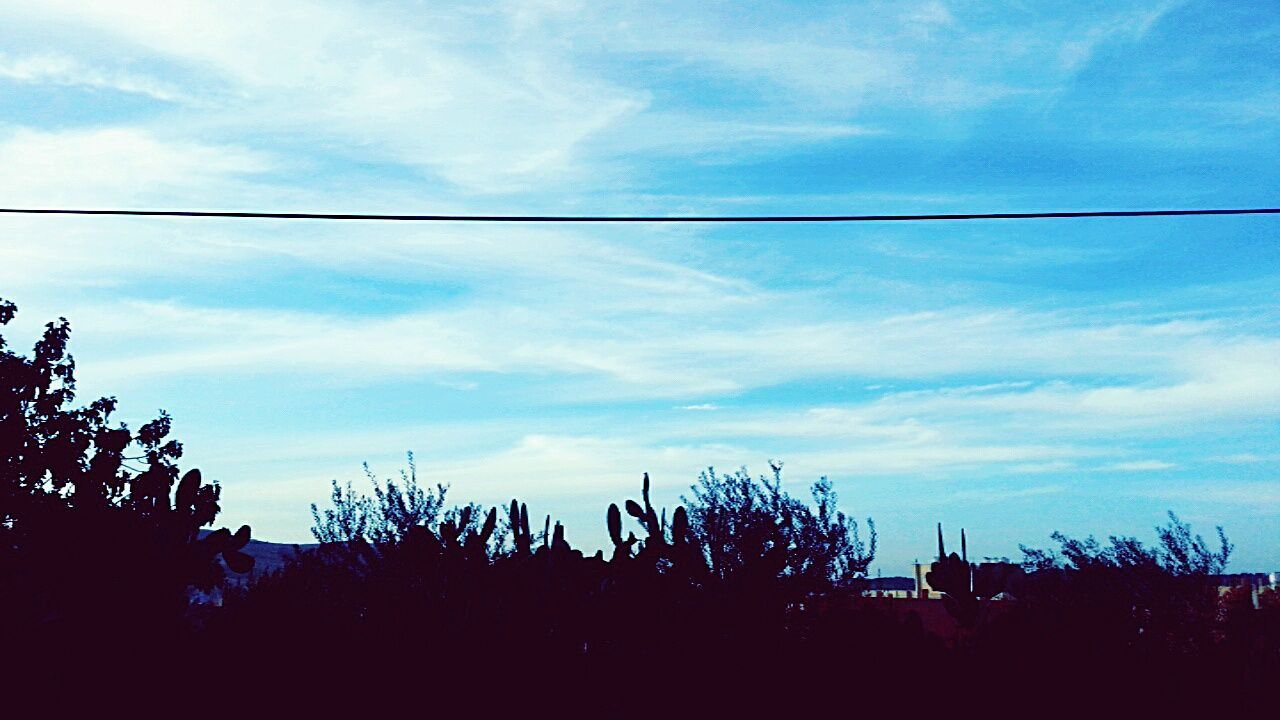 Nature Sky Cloud - Sky Beauty In Nature Tree Traveling First Eyeem Photo Jordan Nature Blue My Favorite Color