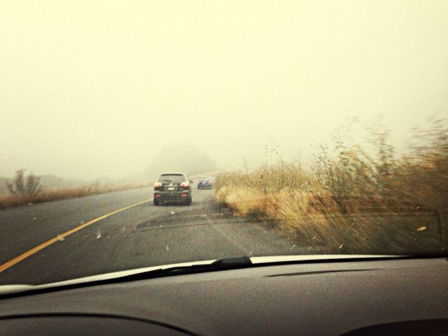 Foggy Morning Driving home.. I swear it felt as if I was entering Silent Hill Creepy