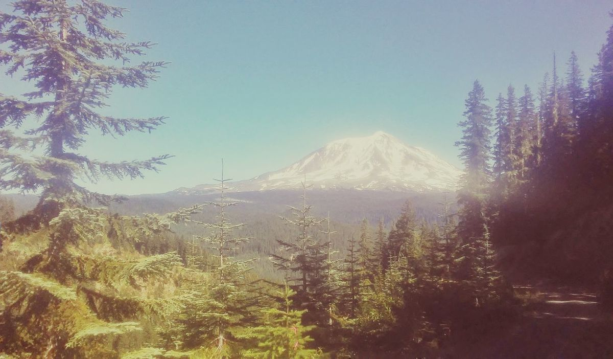 Hi! Beautiful ♥ Pacific Northwest  Hello World Enjoying Life Taking Photos Original Experiances Outdoors Outside Photography Beauty In Nature Outdoors❤ Mt.adams Missing You Summer