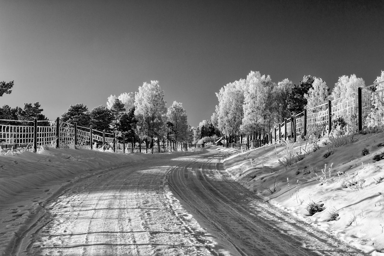 Winter landscape (bnw version) - Tree Clear Sky Nature The Way Forward Beauty In Nature Snow Cold Temperature Blackandwhite Eye4photography  Tranquil Scene Scenics Landscape Idyllic The Week Of Eyeem First Eyeem Photo Hello World EyeEm Masterclass Exceptional Photographs EyeEm Best Shots - Black + White Black And White Black & White Monochrome Monochrome Photography Outdoors Tranquility