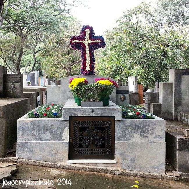 Dia de Finados. All Souls' day. Cemetery Art Peace Finados allsoulsday urban colors city zonasul saopaulo brasil photography aj_graveyards graveyard_dead tv_churchandgraves masters_of_darkness