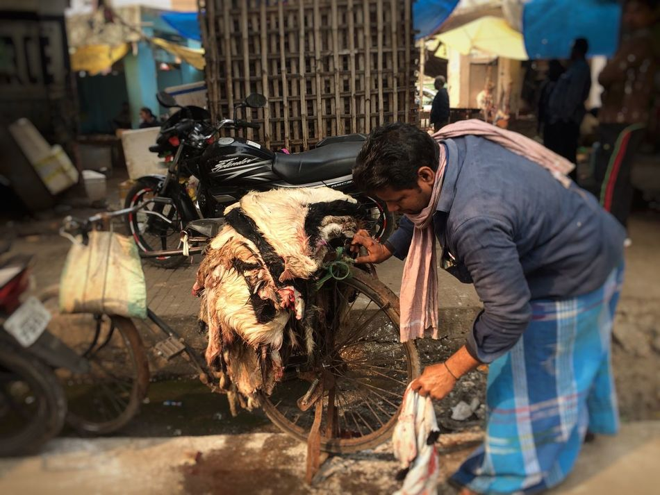 Slaughter is proud murder Slaughter Goats Goats Life Goat Skins Fur Death Alive  Life And Death Killing Non Veg Carnivorous Death & Decay Kill