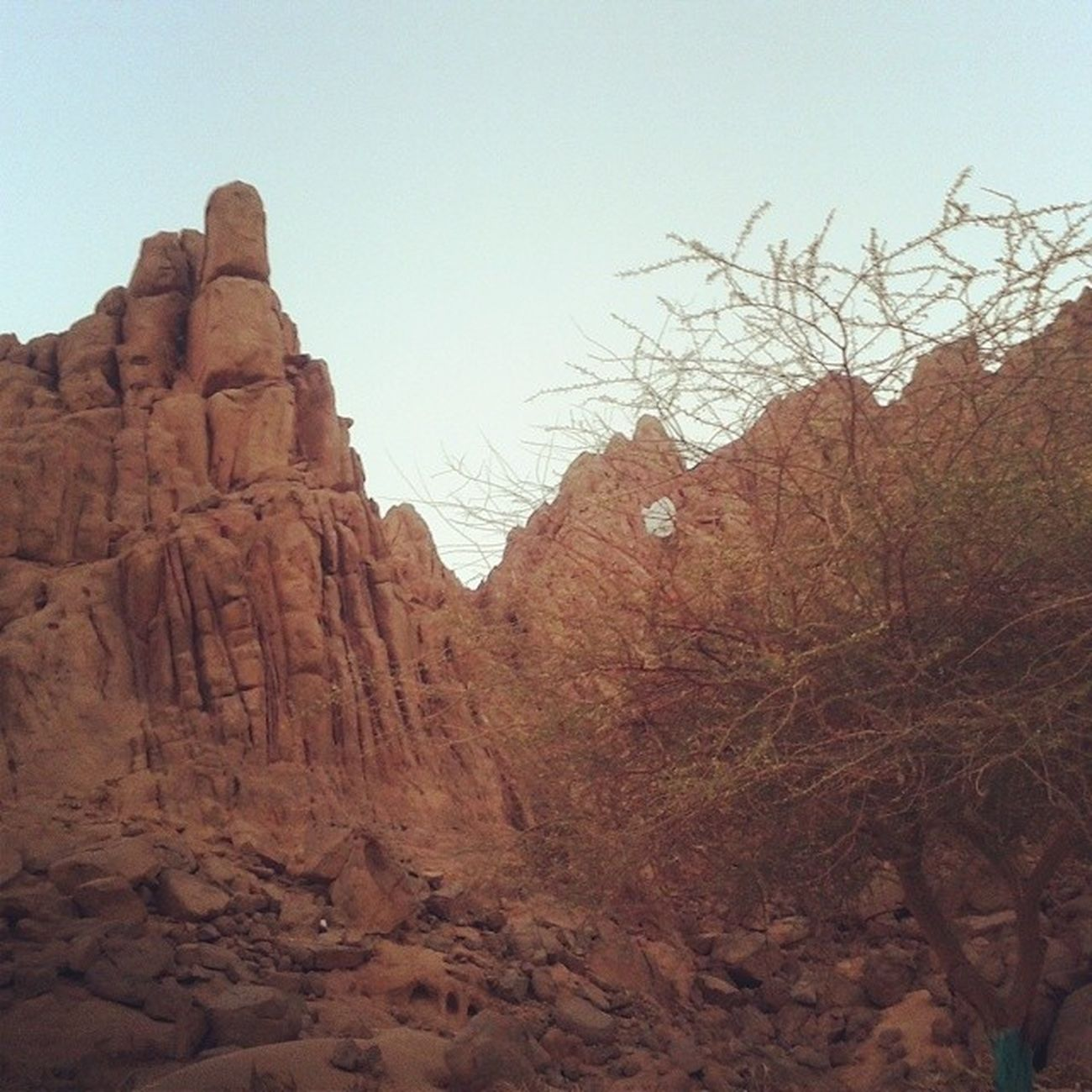 Mountain Natural Safari Sinai 'sDesert sunset takenByMe