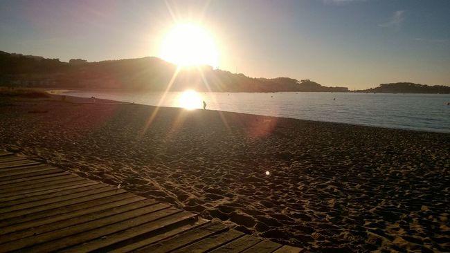 Sunset Beauty In Nature Beach