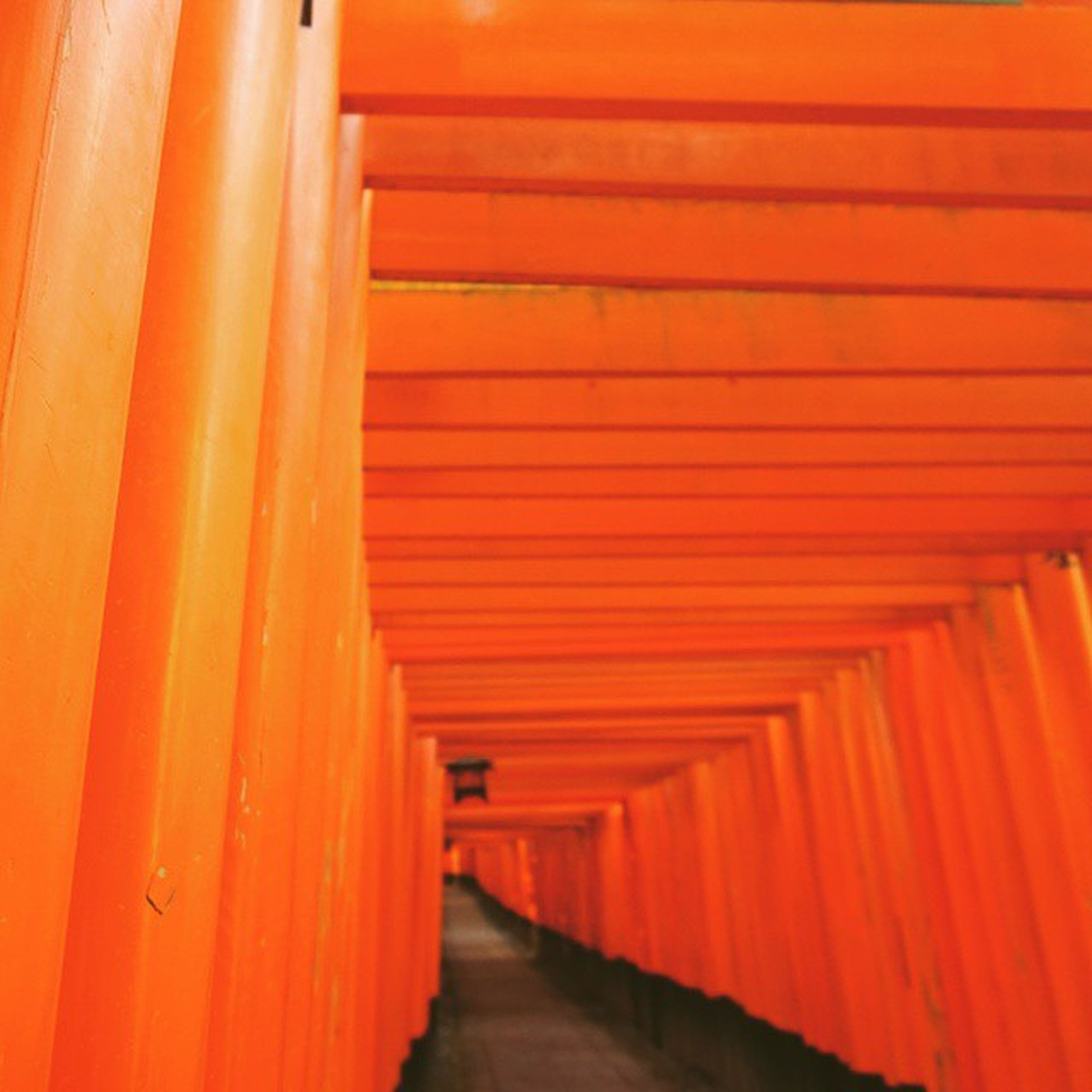 the way forward, diminishing perspective, built structure, vanishing point, architecture, narrow, in a row, long, indoors, red, orange color, corridor, tunnel, empty, walkway, transportation, wall - building feature, illuminated, architectural column, no people
