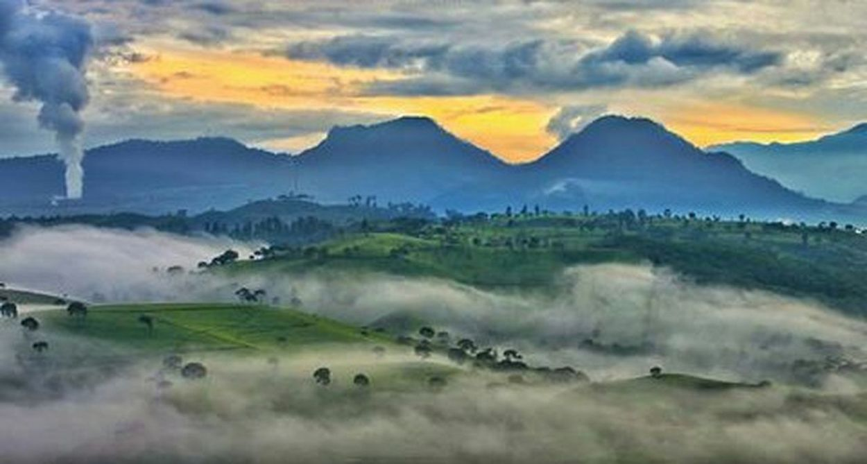 Beautifull Cloud INDONESIA Bandung, West Java Morning Sky Flower Head Closh Up Bandungjuara Mountain Landscape Nature Fog Morning Meadow Dawn Outdoors Rural Scene Mountain Range Tranquil Scene No People Beauty In Nature Panoramic Sunset Day Forest Agriculture