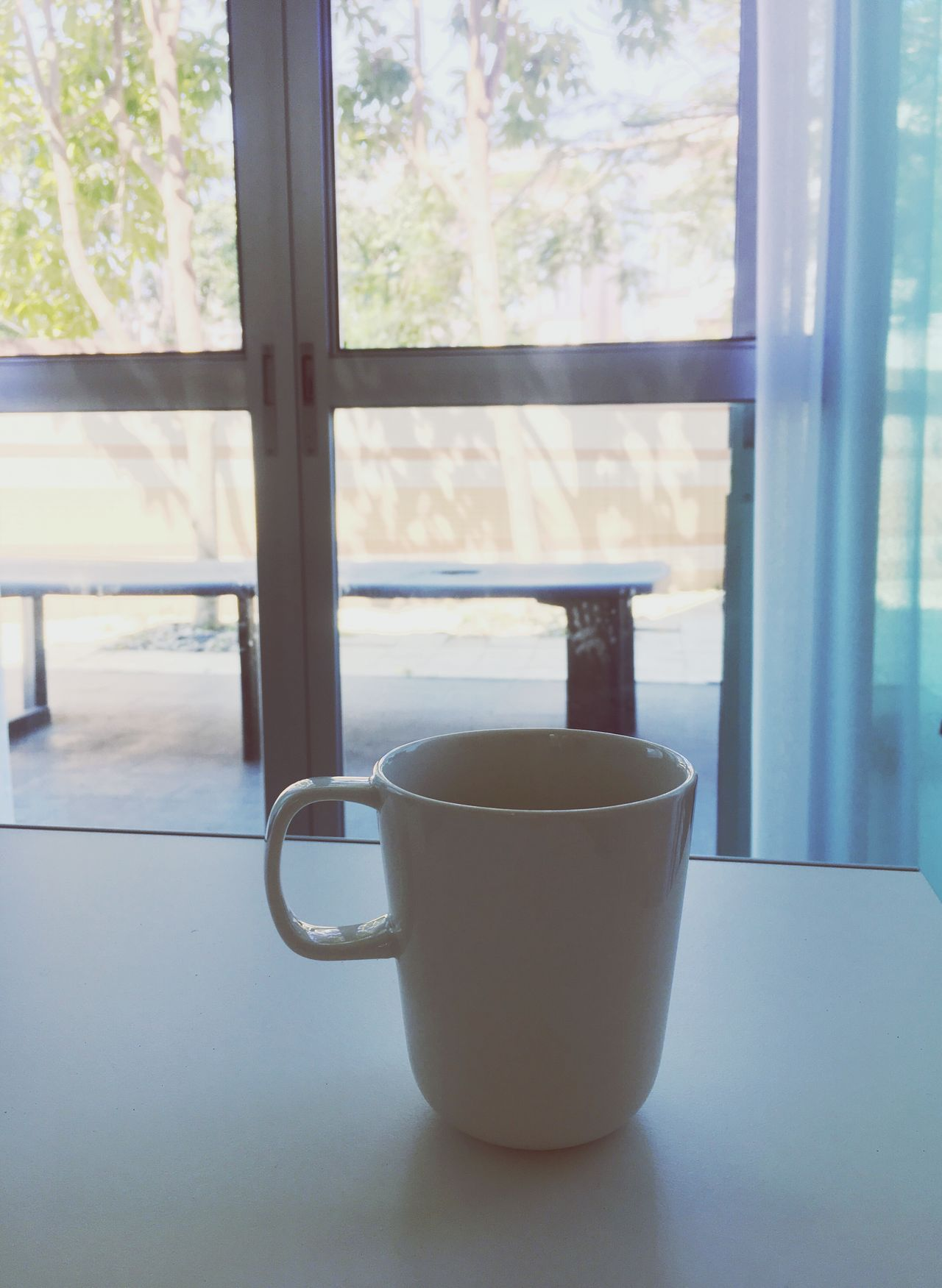 Close-up Day Window Indoors  Coffee Cup Window Sill Food And Drink Freshness Drink Refreshment No People Tea Sunlight Windy Trees