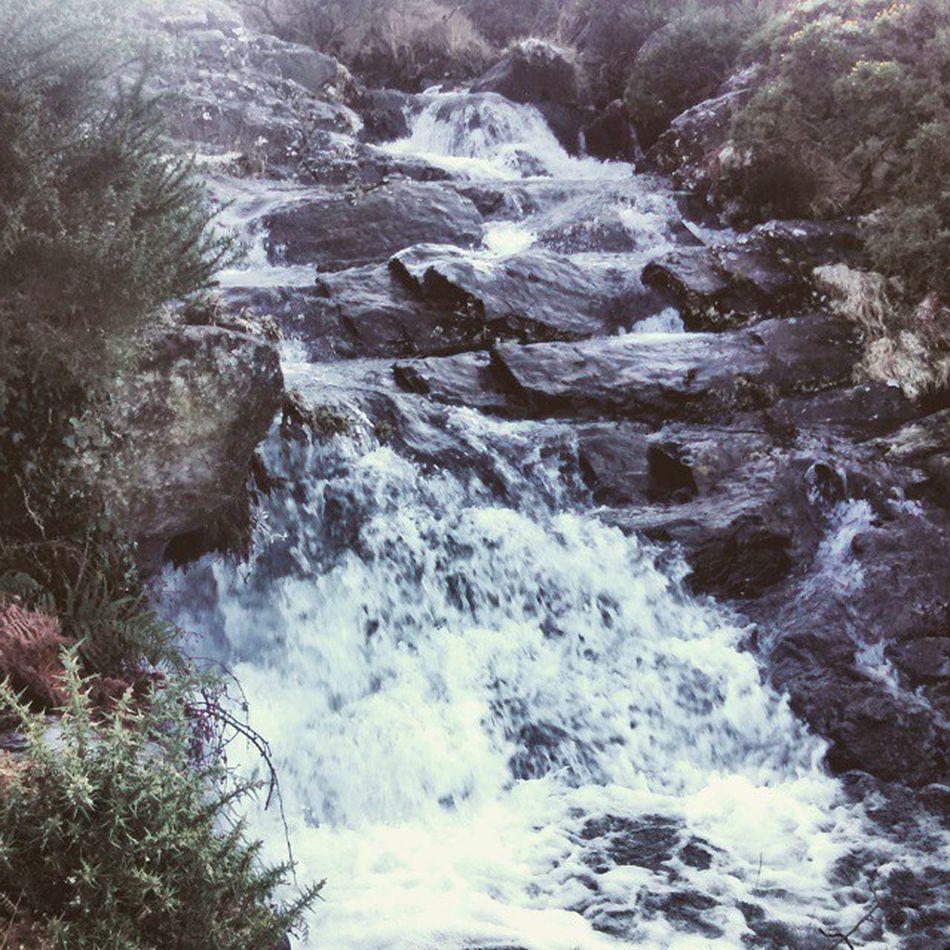 @1980lloyd Waterfall Meldon Dartmoor Iciclehunting