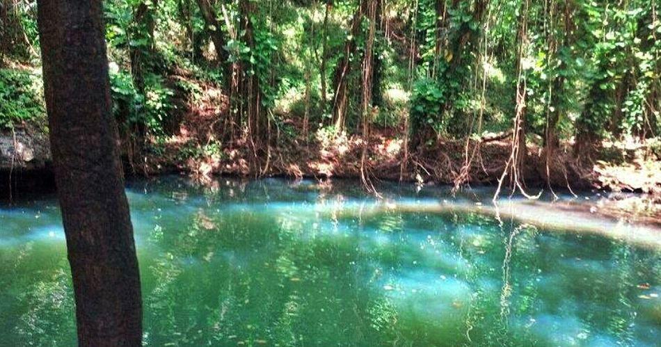 Hawaii Kauai Fountain Of Youth Pirates Of The Caribbean 4 Was Filmed Here