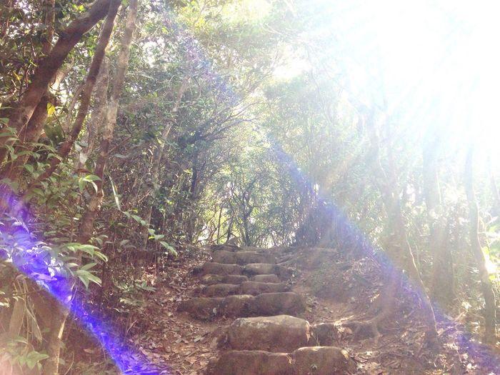 HongKong Mountbutler Amazing Light