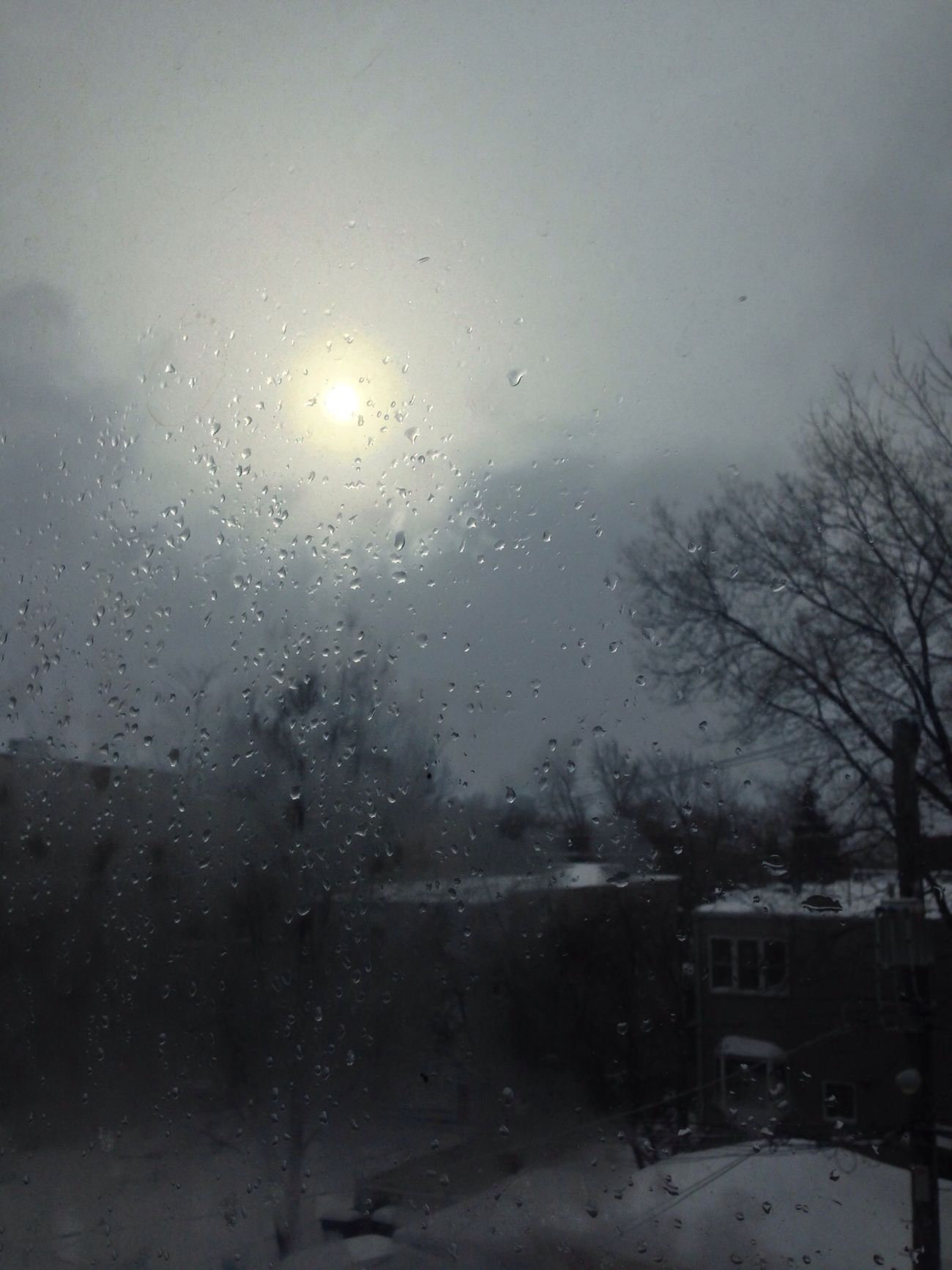 Mornings Beforeigetoutofbed Sun