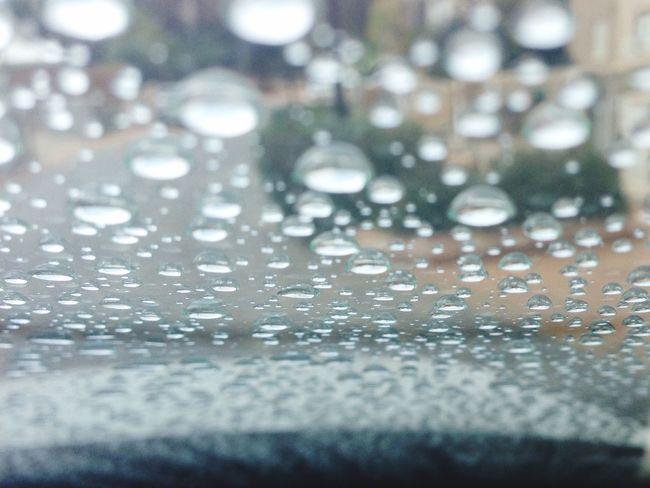 Water Rain Drops Winter Morning Rainingnight Cold Beauty First Rain Finely Wet Close-up PhonePhotography Light Sun Window Glass Love