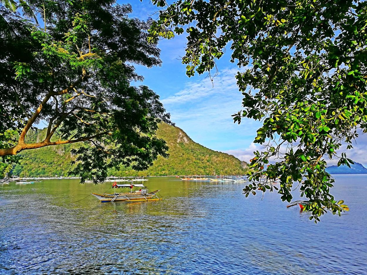 Philippines Tree Water Outdoors Nature Reflection Green Color Day Scenics Beauty In Nature Landscape Sky Mountain Photography ElnidoPalawan2017