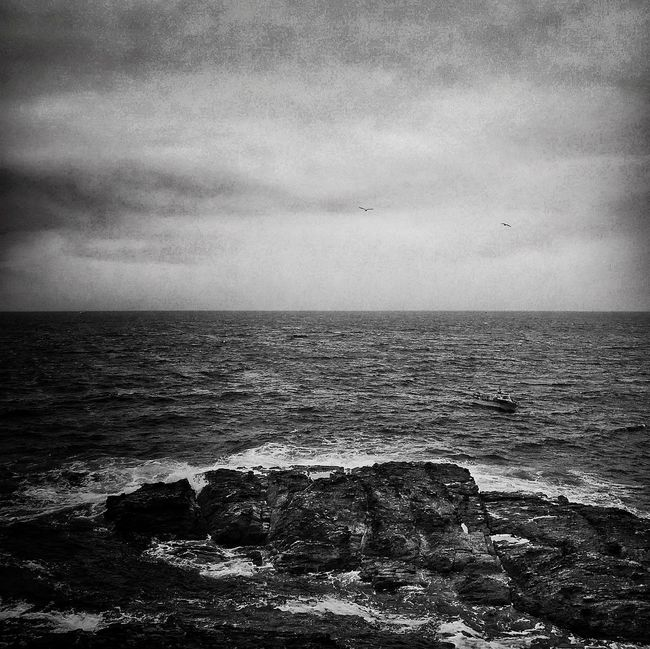 Feliz día de la Fotografía Iphoneonly JohnnyGarcía IPhoneography Sea Blackandwhite Blackandwhite Photography Popular Photos Photography Water_collection Beach