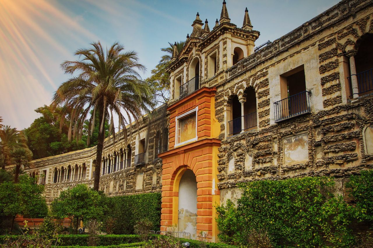 If you are a big fan of the Game of Thrones, you will certainly recognize this amazing historic site in Seville, Spain! The Royal Alcazar built by the Moors is as captivating and serene as shown in the fictional world of Dorne. Architecture Built Structure Building Exterior Low Angle View Outdoors No People Sky Day Tree Sevilla SPAIN Gamesofthrones Alcazar Garden Moorish