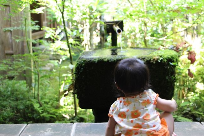 Kyoto Daughter Green Ohara 大原 Enjoying Life Family Ultimate Japan Colour Of Life