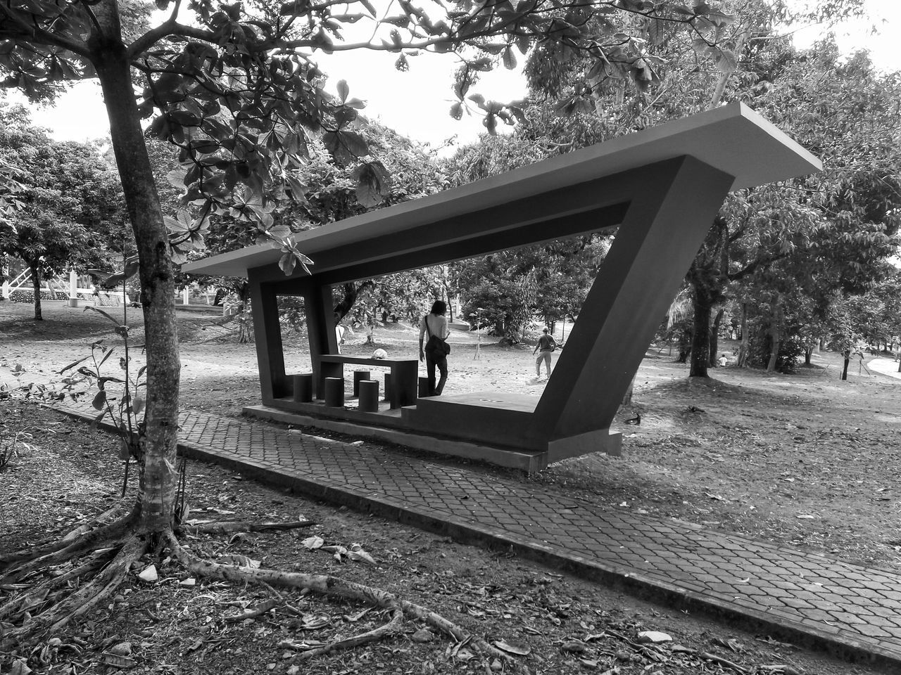 Tree Day Outdoors Built Structure No People Architecture Nature Sky Streetphotography Monochrome Naturelovers Black And White Monochrome Photography Blackandwhite Humaninterest Activity Landscape