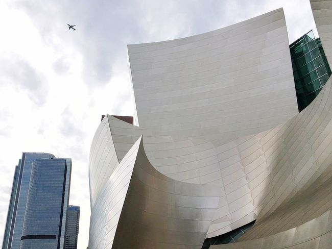 Architecture as urban landmark Architecture Building Exterior Low Angle View Sky Built Structure Flying No People Day Cloud - Sky Outdoors City Skyscraper Sheetmetal Exterior Architecturephotography Modern Gehry Buildings Concerthall LA Life