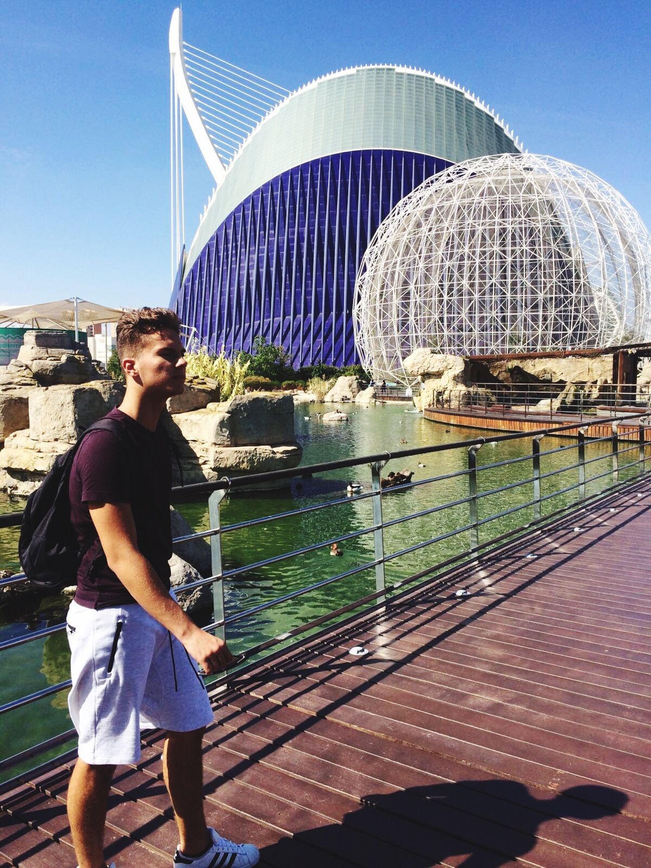 Oceanographic València Built Structure Architecture People Sun Hot Day