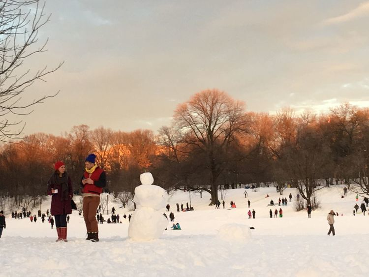 Took a walk in Prospect Park. People were enjoying the snow and the winter weather.
