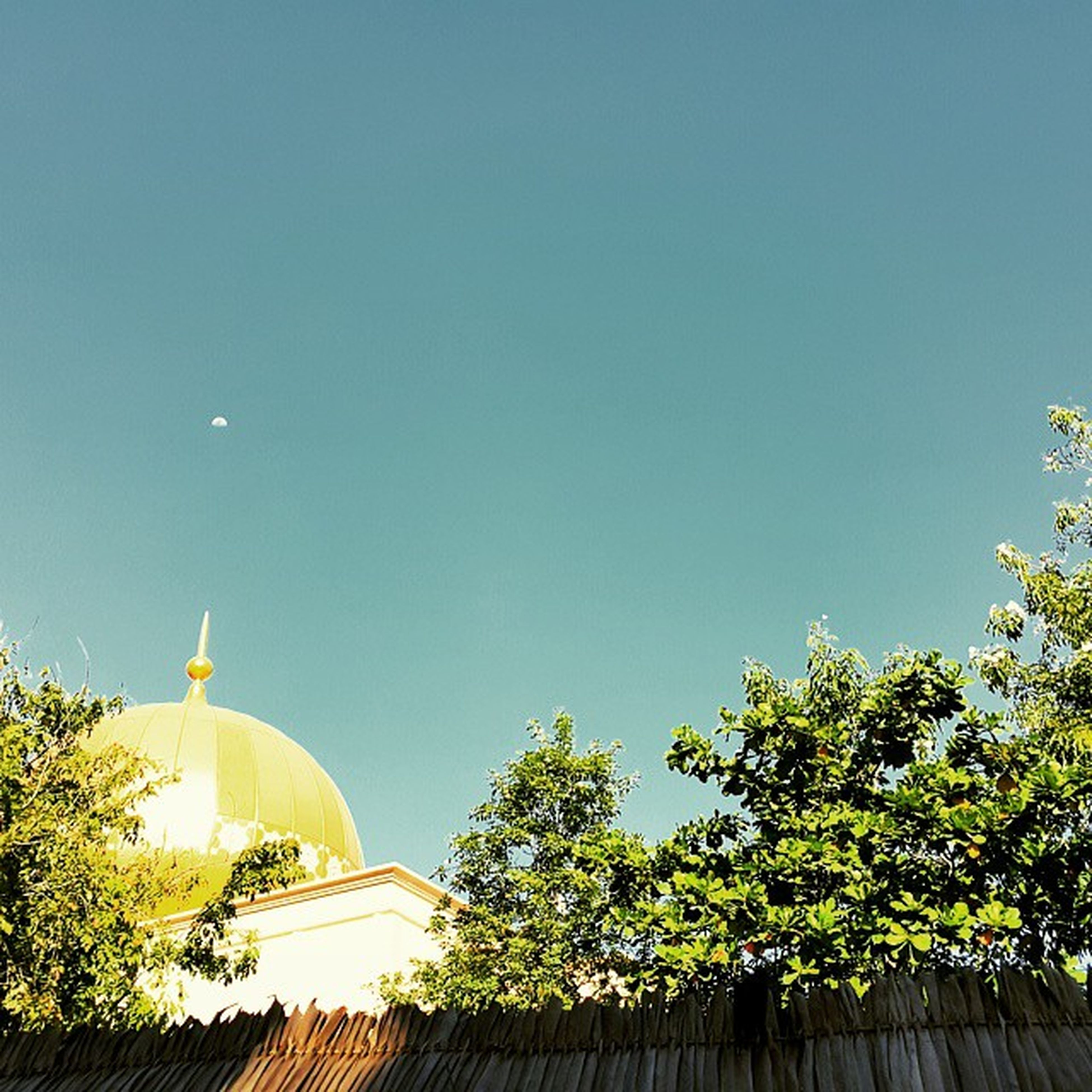 clear sky, low angle view, architecture, built structure, copy space, building exterior, tree, high section, blue, religion, place of worship, spirituality, dome, outdoors, no people, famous place, sky, travel destinations, sculpture, day