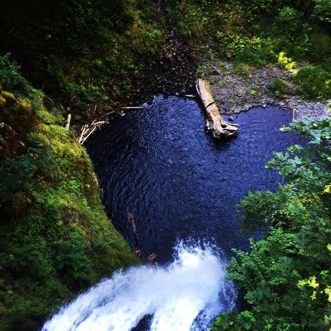 Birds Eye View Oregon Multnomah Falls  Waterfall High Angle View Flowing Water Beauty In Nature Tranquil Scene Eye4photography  EyeEm Best Shots Oregonexplored