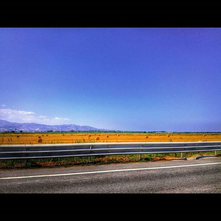 Calabria Nature Field Campo Terra  Sky Cielo Colorful Instaday Picoftheday Ontheroad Calabriadaamare Ig_calabria Yellow Blue Wonderful Beautiful Instagood Italy Road Life Strada Travel Car Mountains