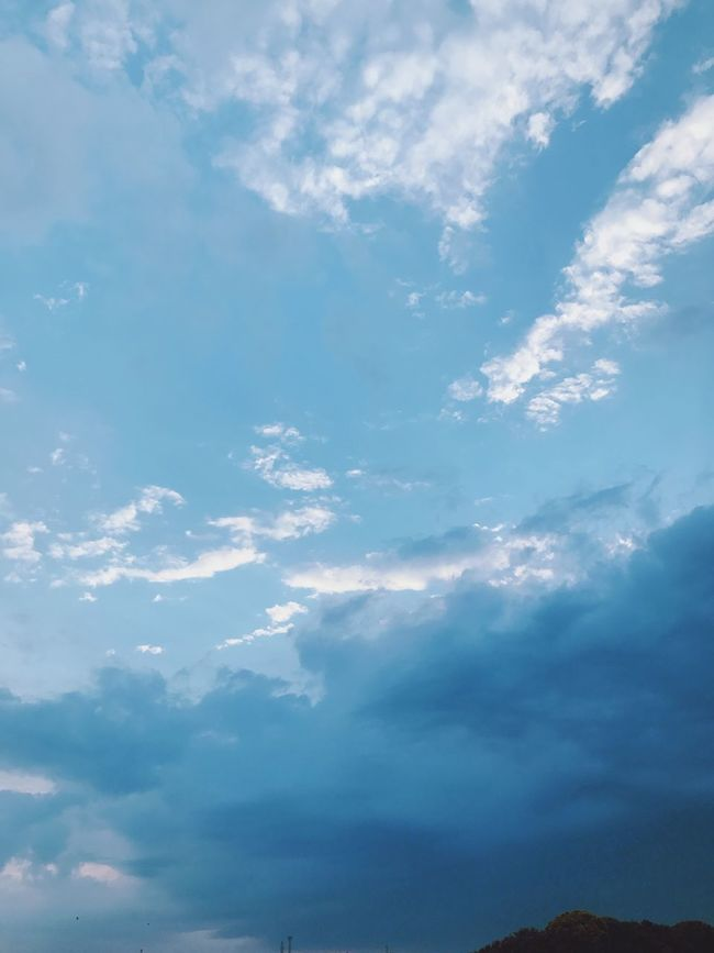 Sky Nature Beauty In Nature Cloud - Sky Scenics Tranquility Low Angle View Day No People Tranquil Scene Outdoors Blue Backgrounds Japanese  Photoshoot Eiko