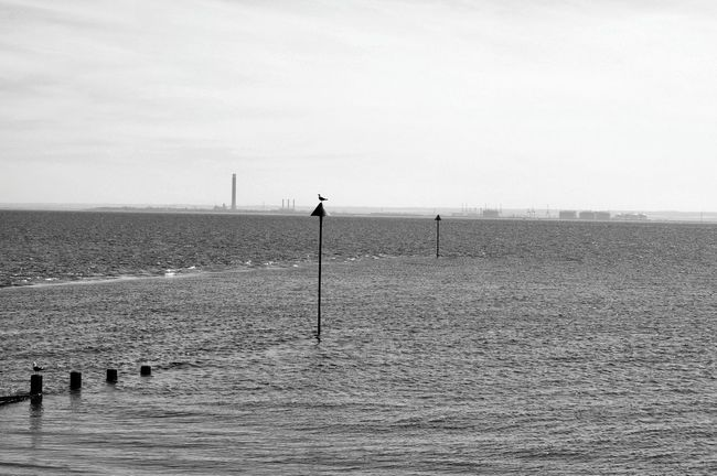 View Across The Thames Chimney Stacks Day Essex Coast Isle Of Grain Monochrome Photography Outdoors River Thames Riverside Shore Sky Southend On Sea Thames Delta Thames River Water Waterfront