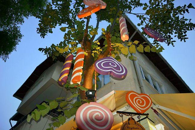 The Culture Of The Holidays Sugar Streetphotography Büyükada Princeislands