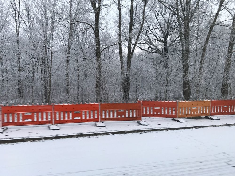 Winter is here Winter Snow First Snow Orange Woods Forest Trees Street Cold Morning